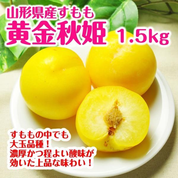 すもも プラム 送料無料 黄金秋姫 1.5kg(9-12玉)山形県産 李