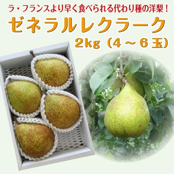 【限定50箱】 ギフト 洋梨 送料無料 山形県産 西洋梨 ゼネラルレクラーク 2kg (4-8玉)