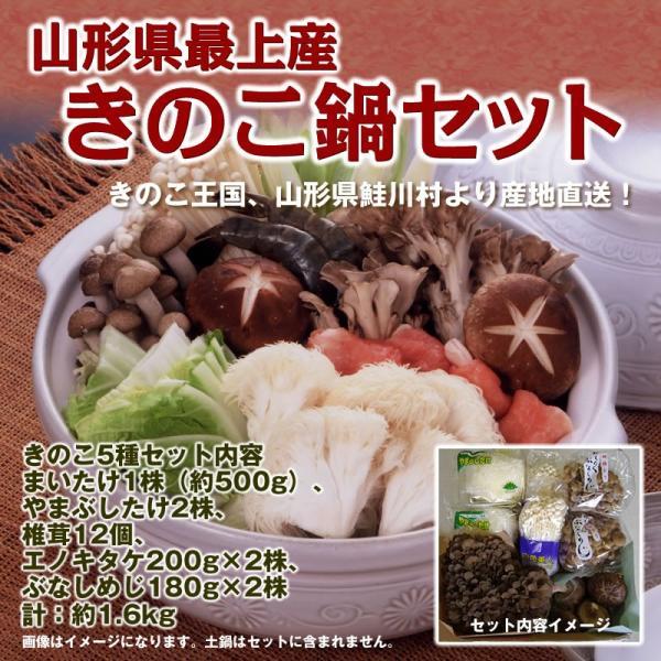 きのこ鍋セット 送料無料 山形県 最上産 約1.6kg 椎茸 やまぶしたけ まいたけ ぶなしめじ エノキタケ