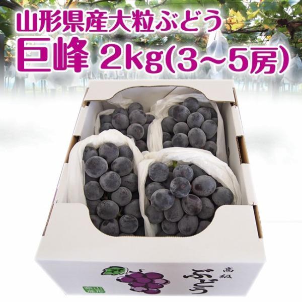 ギフト ぶどう 送料無料 山形県産 大粒 巨峰 2kg(3-5房) 葡萄 種なし