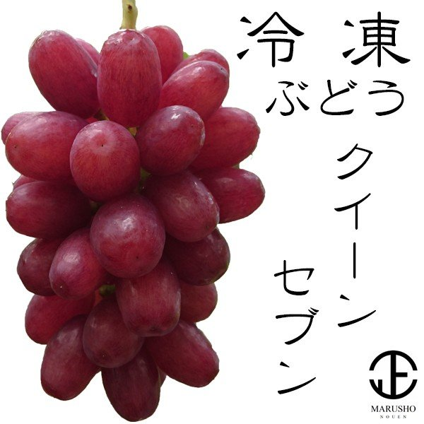 冷凍 ぶどう 希少 葡萄 『クイーンセブン』 100g×6袋(約1房) 山梨県笛吹市産|marunou