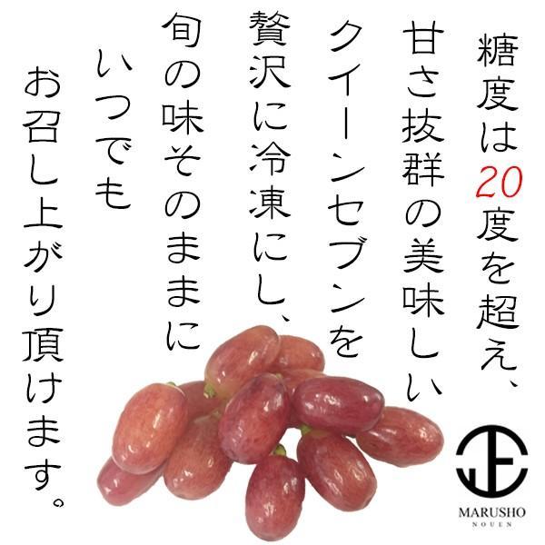 冷凍 ぶどう 希少 葡萄 『クイーンセブン』 100g×6袋(約1房) 山梨県笛吹市産|marunou|02