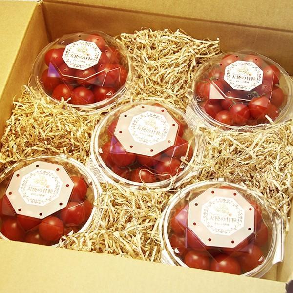 『天使の甘粒』 高糖度 フルーツトマト 150g×5パック 山梨県産|marunou