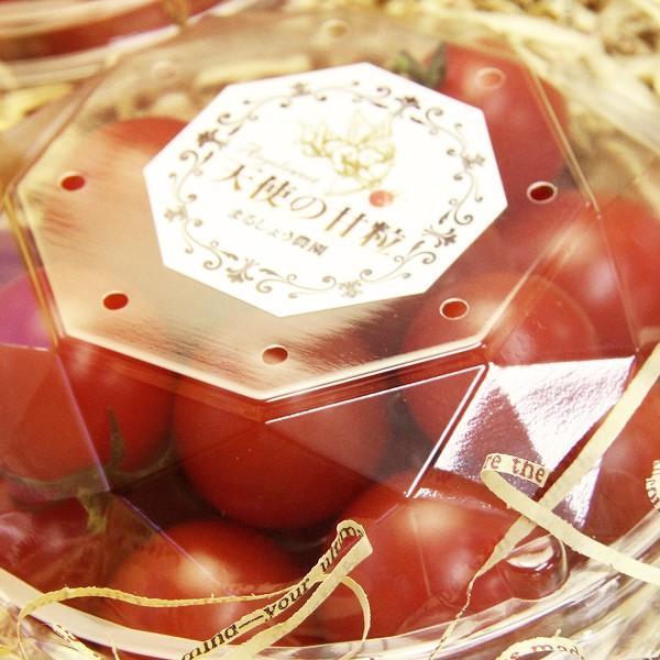『天使の甘粒』 高糖度 フルーツトマト 150g×5パック 山梨県産|marunou|02