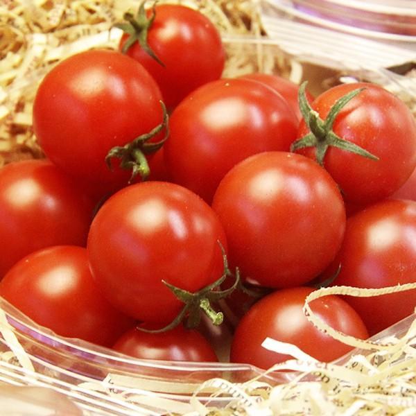 『天使の甘粒』 高糖度 フルーツトマト 150g×5パック 山梨県産|marunou|03