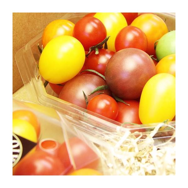 ミックストマト 200g×2パック 山梨県産|marunou|02