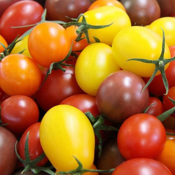 ミックストマト 200g×2パック 山梨県産|marunou|03