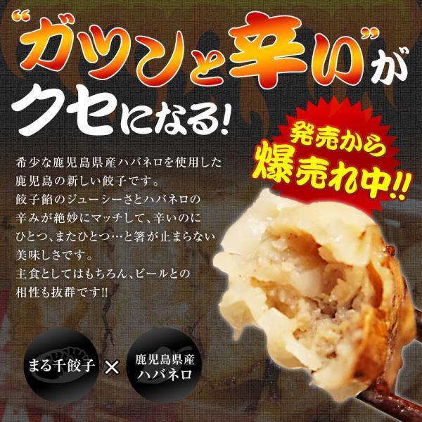 DEATHxDEATH餃子 デスデス餃子 10個入り(冷凍餃子) marusengyouza66 02