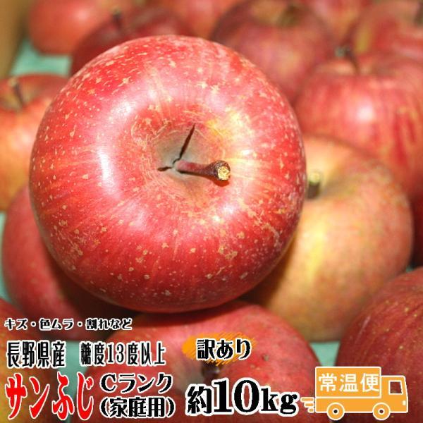 訳あり りんご CA貯蔵 サンふじ 約10kg Cランク 家庭用 糖度13度以上 長野県産 送料無料 フルーツ リンゴ 信州