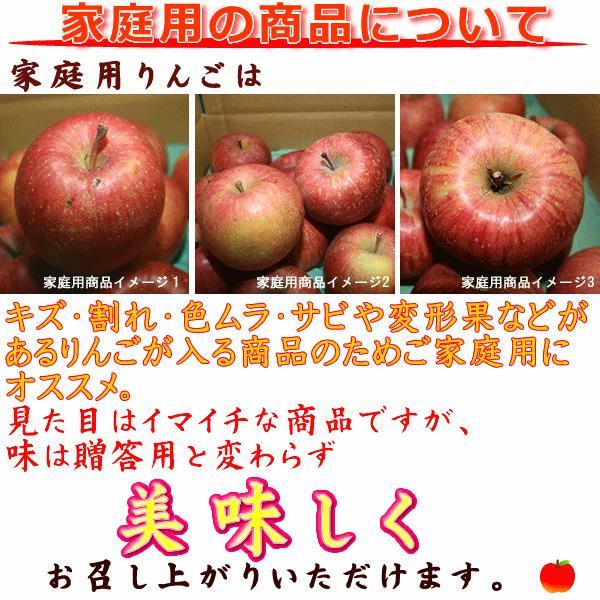 フルーツ りんご サンふじ Cランク 家庭用 約5kg 訳あり 12玉〜18玉 長野県産 リンゴ  糖度13度以上 送料無料 marutomi-s 04