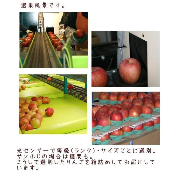フルーツ りんご サンふじ Cランク 家庭用 約5kg 訳あり 12玉〜18玉 長野県産 リンゴ CA貯蔵  糖度13度以上 送料無料  [クール便]|marutomi-s|05