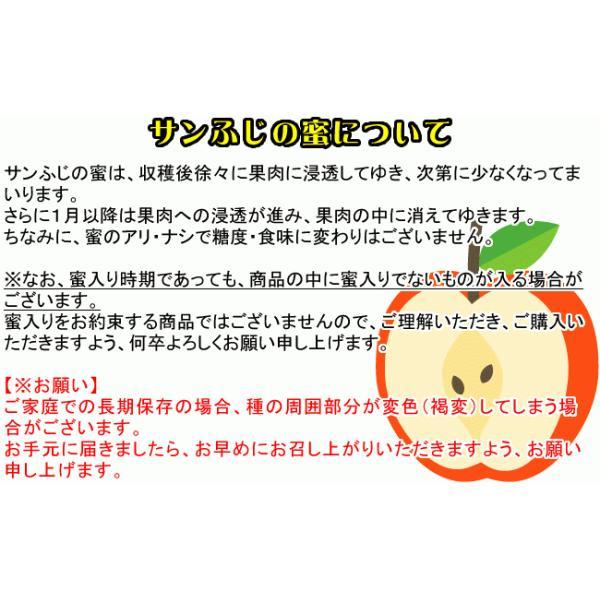 フルーツ りんご サンふじ Cランク 家庭用 約5kg 訳あり 12玉〜18玉 長野県産 リンゴ CA貯蔵  糖度13度以上 送料無料  [クール便]|marutomi-s|07