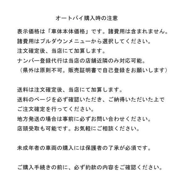 2019年モデル 新車 新型 レッツ 紺 カード支払いOK スズキ SUZUKI   50ccスクーター 原付 2BH-CA4AA パーセクブルーNo.4|marutomiauto0103|03