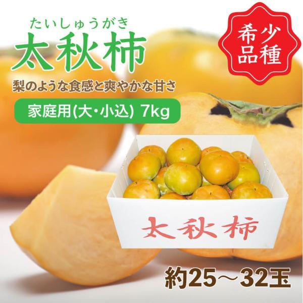 太秋柿 たいしゅうがき 愛媛県産 柿 家庭用 大・小込み 7kg 約25~32玉