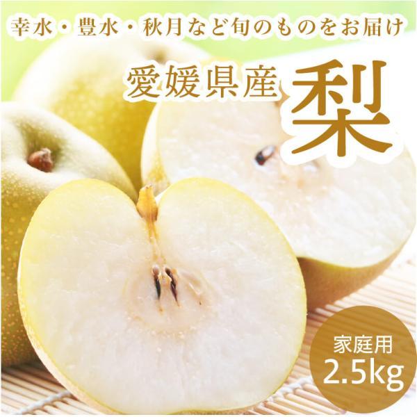 梨 ナシ 愛媛県産 幸水 豊水 2.5kg 約6~9玉