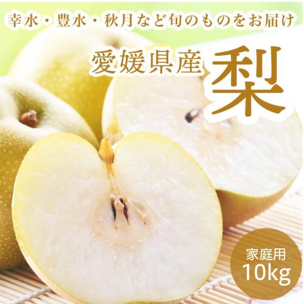 梨 ナシ 愛媛県産 幸水 豊水 10kg 約18~36玉