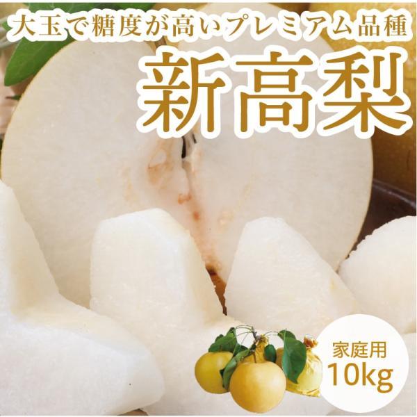 新高梨 愛媛県産 梨 にいたかなし 家庭用  10kg 約18~32玉
