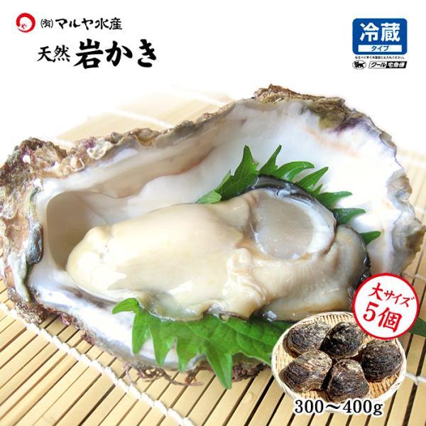 [石川県産]素潜り漁の天然物 殻付き岩牡蠣 [生食用:岩カキ] ×5個(1個300〜400g) maruya