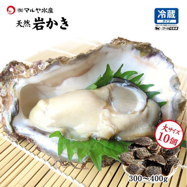 [石川県産]素潜り漁の天然物 殻付き岩牡蠣 [生食用:岩カキ] ×10個(1個300〜400g)|maruya