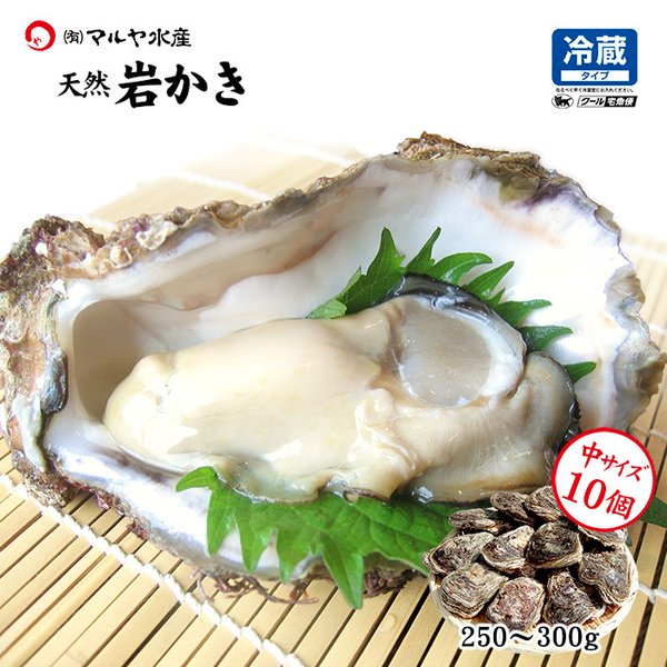 [石川県産]素潜り漁の天然物 殻付き岩牡蠣 [生食用:岩カキ] ×10個(1個250〜300g) maruya