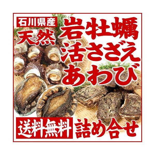 [石川県産]素潜り漁の天然物 殻付き岩牡蛎&活さざえ&活あわび詰め合せ(岩牡蠣5個・サザエ10個・あわび×2枚)|maruya