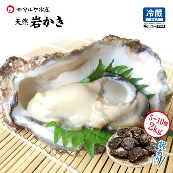お中元 ギフト 岩牡蠣 (天然 殻付き 生食用) 石川県産 お試し訳あり 5〜10個 合計2kg以上