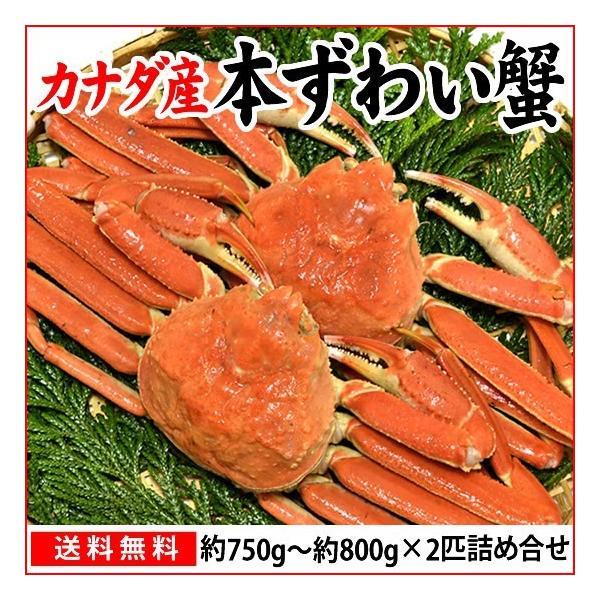 本ずわい蟹:約750g〜約800g×2匹 詰め合せ|maruya