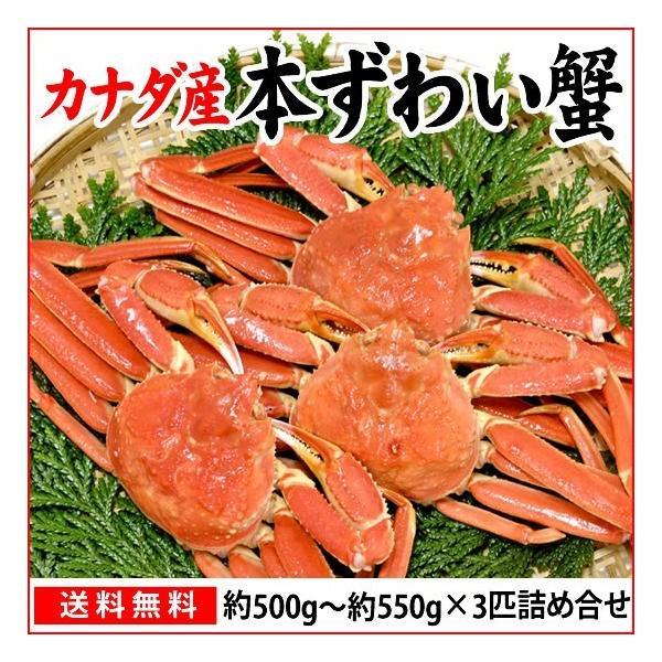 本ずわい蟹:約500g〜約550g×3匹 詰め合せ|maruya