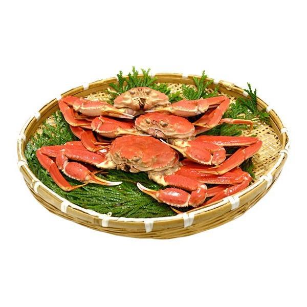 本ずわい蟹:約500g〜約550g×3匹 詰め合せ|maruya|02