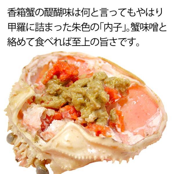(石川県橋立産)訳あり足折れ&サイズ混合 茹で香箱蟹/せいこ:小サイズ8〜10匹 約1.0kg 詰め合せ|maruya|02