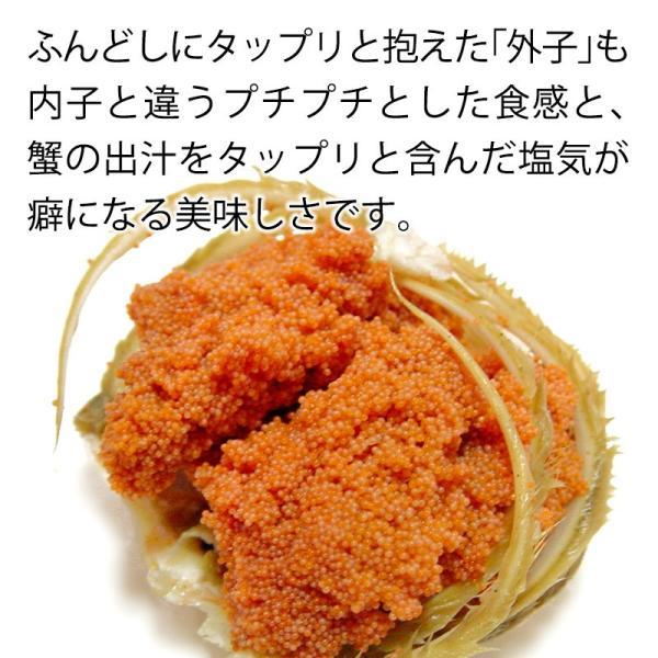(石川県橋立産)訳あり足折れ&サイズ混合 茹で香箱蟹/せいこ:小サイズ8〜10匹 約1.0kg 詰め合せ|maruya|03