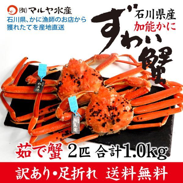(石川県橋立産)訳あり足折れ ズワイガニ/加能かに:2匹 合計1.0kg以上|maruya
