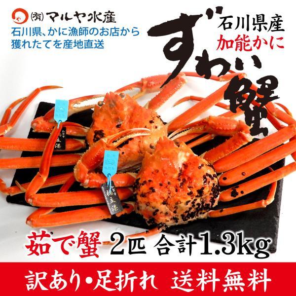 (石川県橋立産)訳あり足折れ ズワイガニ/加能かに:2匹 合計1.3kg以上|maruya