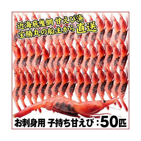 (石川県産)宝勝丸水揚げ 子持ち甘えび:50匹|maruya