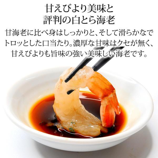 (石川県産)宝勝丸水揚げ 白がすえび(白とらえび):20〜30匹入 500g|maruya|04