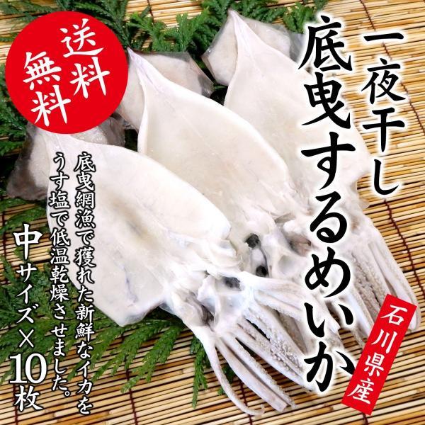 するめいか 干物/一夜干し (石川県産 生原料使用) 中×10枚