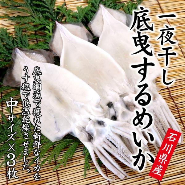 するめいか 干物/一夜干し (石川県産 生原料使用) 中×3枚