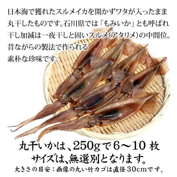 (福井県産)熟成わた入り 丸干しイカ(もみいか):3〜5枚入り×1袋|maruya|02
