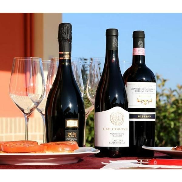 コロッネッラ レコローネ モンテプルチアーノ ダブルッツォ 赤ワイン モンテプルチアーノ 100% ミディアムボディ イタリア アブルッツォ州 750ml|marwell|02