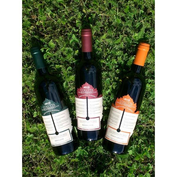 コルッタ ピノグリージョ(エコフレンドリーワイン) ピノグリージョ 100% 辛口 イタリア フリウリヴェネツィアジューリア 白ワイン 750ml marwell 05