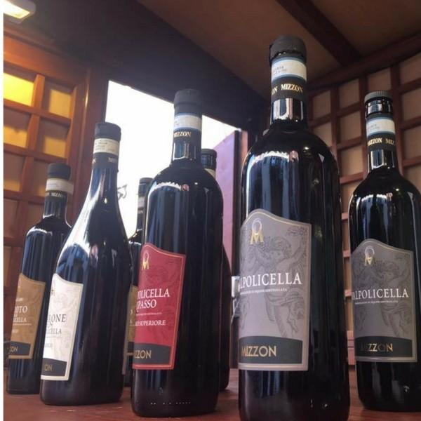 ミッツォン ヴァルポリチェッラ 2015 コルヴィーナ ブレンド ミディアム イタリア ヴェネト州ヴェローナ 赤ワイン 750ml|marwell|03