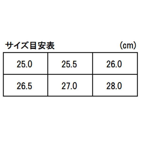 ダイワ フィッシングシューズ DS-2102 25.0cm ブラック