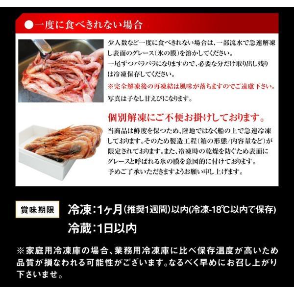 あまえび アマエビ 福井県 日本海 越前産 生食OK 酸化防止剤無添加 子持ち甘エビ 生500g 船上冷凍 生食 お刺し身 最高級 冷凍便 送料無料|masuyone|19