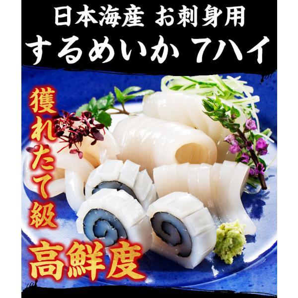 [生スルメイカ  烏賊] 解凍後に吸盤が吸いつく鮮度♪ 日本海産の生するめいか姿×7ハイ 約1.5kg[生/急速冷凍/冷凍便/送料無料]|masuyone|06