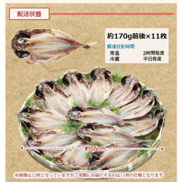 アジ あじ 鯵 干物 一夜干し 脂のり良し&肉厚 アジ開き干し(約150-170g前後×11枚) 冷凍便 送料無料|masuyone|03