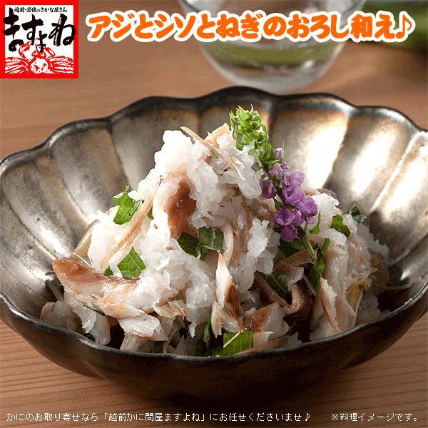 アジ あじ 鯵 干物 一夜干し 脂のり良し&肉厚 アジ開き干し(約150-170g前後×11枚) 冷凍便 送料無料|masuyone|05