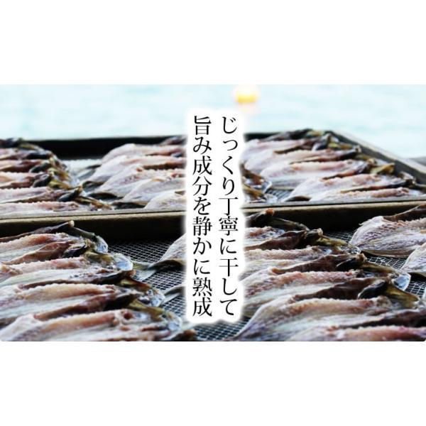 アジ あじ 鯵 干物 一夜干し 脂のり良し&肉厚 アジ開き干し(約150-170g前後×11枚) 冷凍便 送料無料|masuyone|08