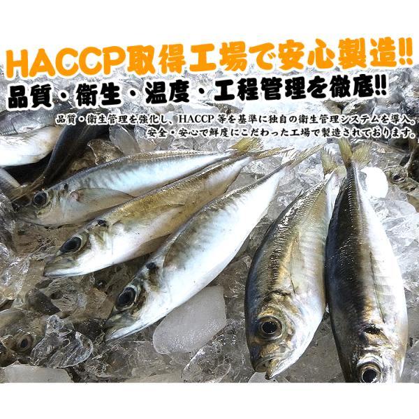 鯵 アジ ナゲット 魚嫌いさんも青魚パクパク♪フィッシュナゲット1kg 約20g×50個入 お弁当 国産あじ使用 冷凍便 送料無料]|masuyone|05