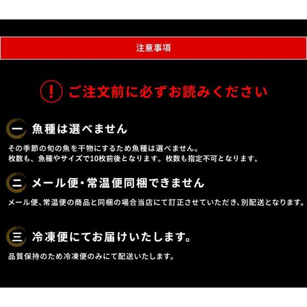 干物 北陸 石川県 能登の旬魚5種、無添加熟成一夜干し干物セット(10枚以上) 同梱不可 冷凍便 送料無料|masuyone|04