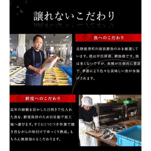 干物 北陸 石川県 能登の旬魚5種、無添加熟成一夜干し干物セット(10枚以上) 同梱不可 冷凍便 送料無料|masuyone|08